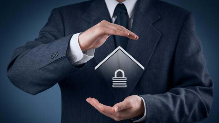 Sicurezza e Istituti di Vigilanza Privata